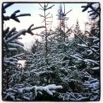 InstagramCapture_8321d202-67f5-42b3-8002-b94146ba9ac3